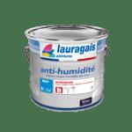 Peinture anti-humidité lauragais peintures
